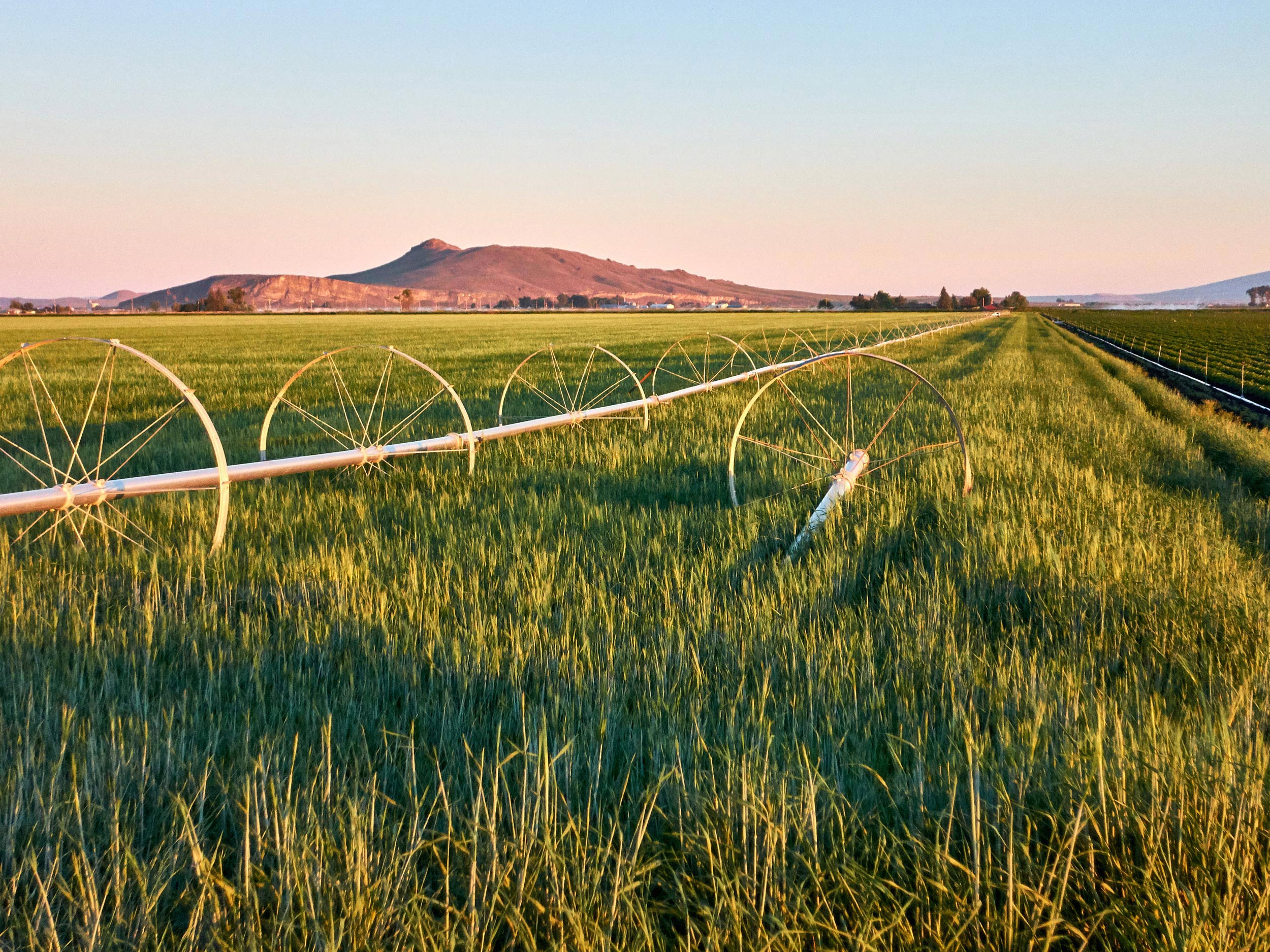 Oregon Agricultural Real Estate Photography
